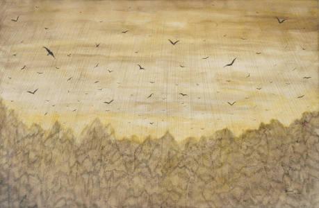nachtvögel